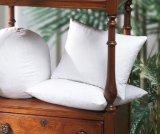 Het witte Tussenvoegsel van het Kussen van het Hoofdkussen 100%Cotton van de Veer van de Eend