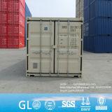 Speicher-Entwurfs-Versandbehälter des China-Hersteller-20gp 20DC 40hc für Verkauf