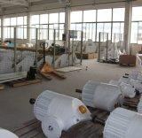 Maximale Wind-Turbine der Energien-100kw mit 3 Schaufeln