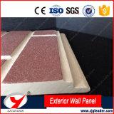 Decoratieve Raad van de Muur van de Stijl van de Korrel van het Hout van de Reeks van het Cement van de kleur de Buiten