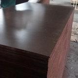 Madera contrachapada impermeable de la cara de la película de Brown de la base del álamo para la construcción (9X1250X2500m m)
