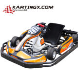 200cc Adult Karting Racing Carts