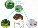 Lettiera del tofu del profumo del tè verde con controllo e Flushable di odore