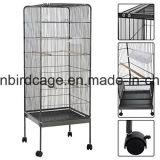 Parrot Bird Cage Large Metal Bird Cage avec 4 roues