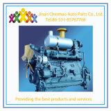 De Leiding van de Dieselmotor van Deutz van Weichai 226b voor de Markt van Zuidoost-Azië