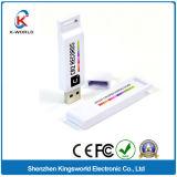 2GB Plastic USB Flash Disk mit Color Printing