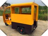 do passageiro do eixo traseiro das rodas do diferencial 3 de 48V/60V 800W triciclo elétrico