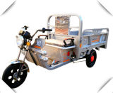 Top quality Supplier Promotional Highly Protective Electric Tricycle