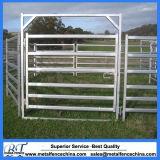 6 бар экономики домашнего скота крупного рогатого скота во дворе панели заслонки