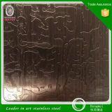SUS304 het in reliëf gemaakte Blad van het Metaal Decoratief voor Roestvrij staal