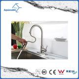 Scegliere il rubinetto del dispersore di Kithcen del miscelatore della cucina della maniglia
