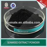 Poudre d'éclailles d'extrait d'algue