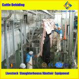 가축 도살장 가축 도살 장비