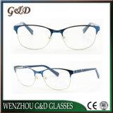 Optisch Frame 50-321 van het Oogglas van Eyewear van de Acetaat van de manier Populair