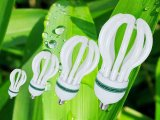 Dispositivos ahorros de energía CFL de los bulbos tricolores del loto el 100% para los hogares usar