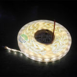 Bon prix 2835 LED Rope Light 60LED IP68 pour éclairage