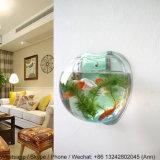 Serbatoio di pesci acrilico moderno e bello