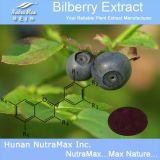 100% Nutural Bilberry АКАДЕМИЯ 25% Anthocyanidins (Vaccinium Myrtillus L.)