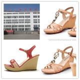 Materiais de poliuretano PU Rein para Lady High Heels