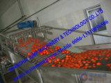 Новое пролом Brix 28-30% затира томата урожая 2017 горячий