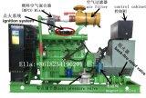 Générateur de biogaz de la ferme 20kw de vache