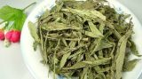 Steviaは健全な茶を残す