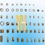 Steel et Brass inoxidables Machining Shaft (X29)