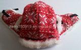 Мода трикотаж Earflap зимой Red Hat (DH-LH62020)