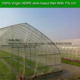 5m Weiß-Farben-Antiinsekt-Netz-Antiblattlaus-Ineinander greifen-Insekt-Netz für Gewächshaus