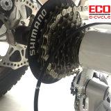 リチウム電池が付いている脂肪質のタイヤおよび合金フレームの電気三輪車