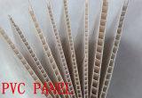 Constructeur compétitif de la Chine de panneau de mur de PVC 2017 (RN-138)