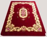 High Qualiy Chenille Floor / Bath / Door / Area Mat / Carpet / Rug