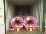 Bobina de aço galvanizado pré-pintado de primeira qualidade de fábrica (PPGI / PPGL) / Folha de cobertura