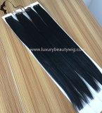"""22 """" 1#自然で黒いテープ毛の拡張"""