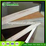 Contre-plaqué de faisceau de bois dur avec le meilleur prix de Linqng Chengxin