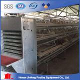 Cages automatiques de poulet de batterie de matériel de volaille