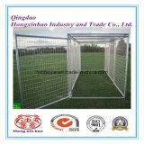 Grande canile esterno del cane per il comitato della rete fissa della fossa di scolo del cane rete fissa del ferro/del cane/fossa di scolo del cane