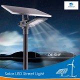 Delight 3.2V 60W Lampe LED de plein air solaire rue