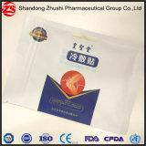Fábrica Zhushi parche de gel de refrigeración OEM