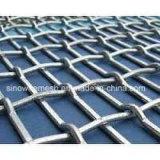 Rete metallica unita serratura dell'acciaio a basso tenore di carbonio di Sailin