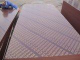 Construction를 위한 필름 Faced Plywood