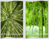 タケデザイン居間のキャンバスおよび木の印刷装飾的な折るスクリーン部屋ディバイダXの3パネル