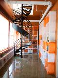 Moderne Form-hölzernes gewundenes Stahltreppenhaus