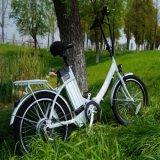Alta Qualidade eléctricos rebatíveis 250W barato aluguer de bicicletas Ebike dobrável