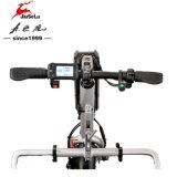Batería de litio de 24V 250W Silver Kits de conversión de silla de ruedas eléctrica (JSL028A)