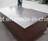 Contreplaqué Commerical, China Factory Professional Suppliers