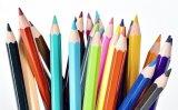 Crayon Wooder pour enfants