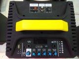 De Grote Krachtige Draagbare Navulbare Spreker op hoog niveau Mic van het Karretje van Bluetooth van het Systeem van de Karaoke--Qx-1214