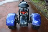 1000W 모터를 가진 3개의 바퀴 전기 기관자전차