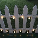 Weihnachten oder andere feenhafte im Freien dekorative LED Birnen-Beleuchtung des Feiertags-Gebrauch-